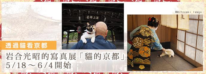 岩合光昭写真展「ねこの京都」、5/18~6/4開催