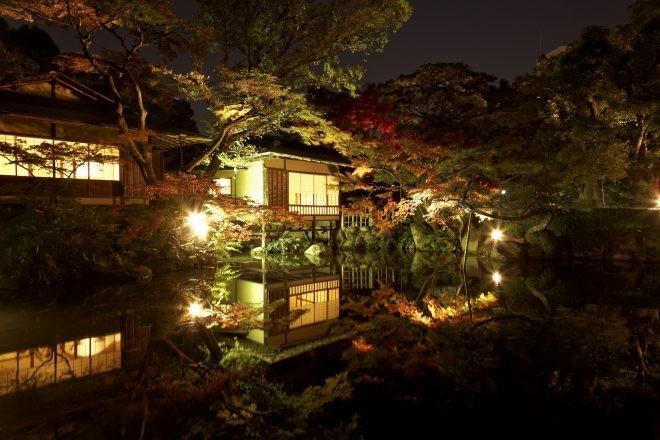 秋 紅葉 池 夜