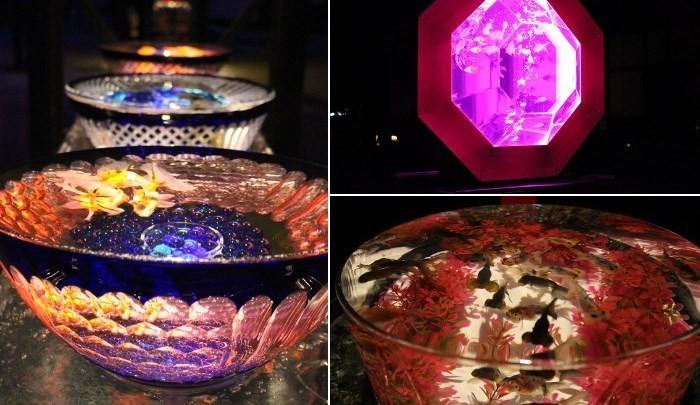 宣傳大使上戸彩:「希望有更多的外國人來參觀」!「紀念大政奉還150周年 Art Aquarium城 ~京都・金魚之舞~」於二条城開幕!
