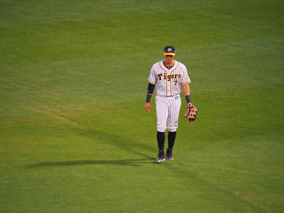職棒阪神虎選手