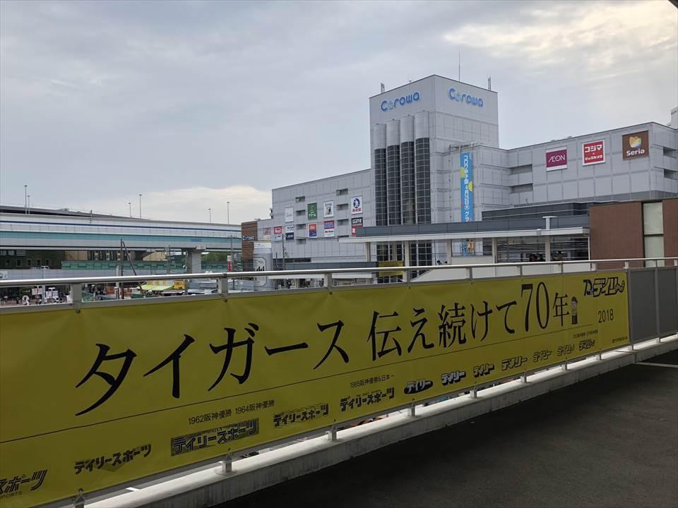 Corowa甲子園