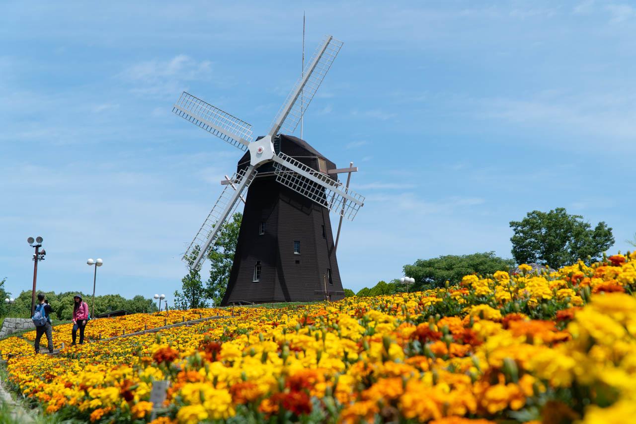 國際花和綠的博覧會