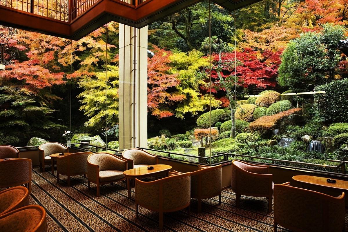 秋天能欣賞染上美麗色彩的楓葉