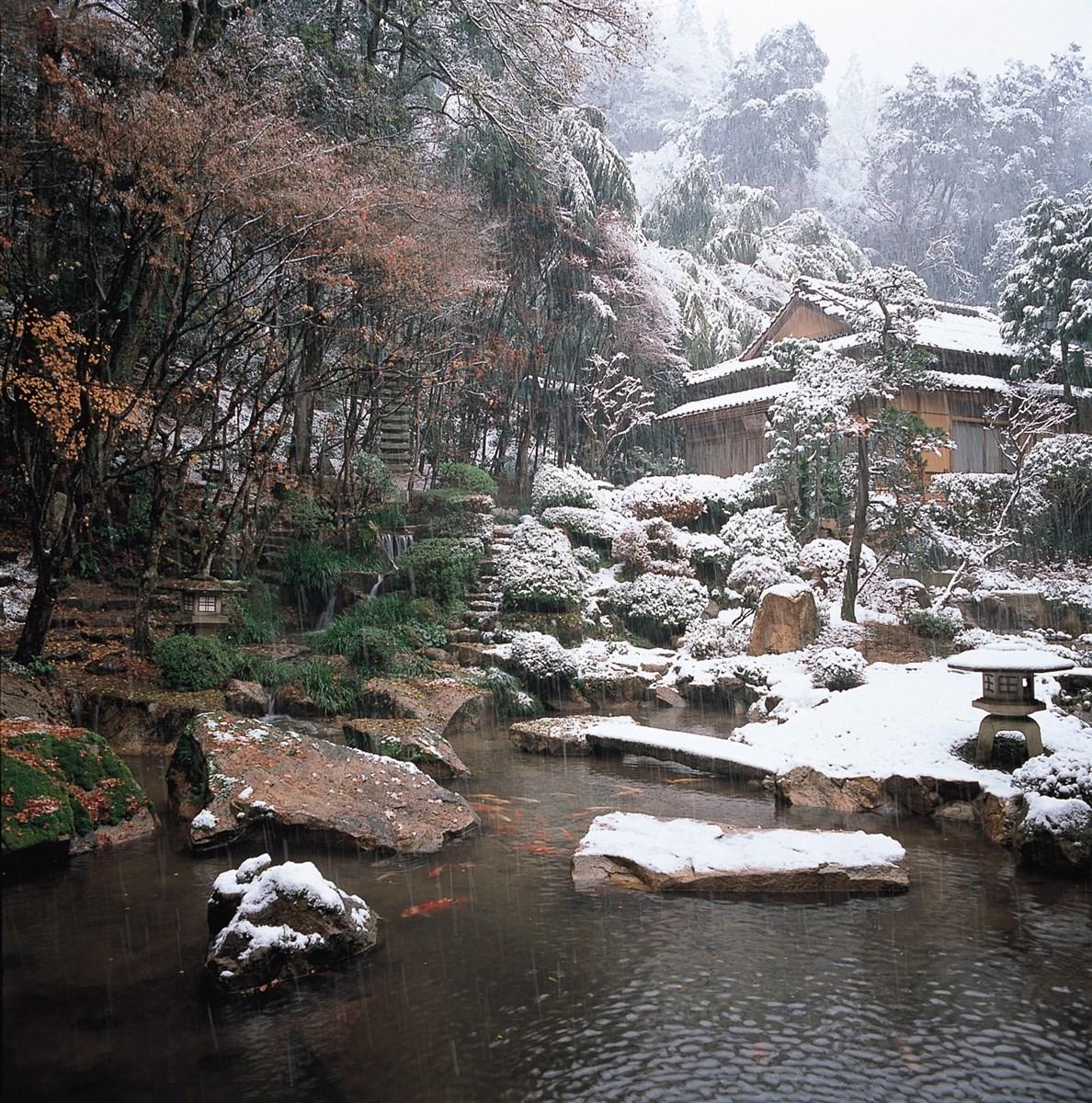 冬天被純白積雪覆蓋的庭院